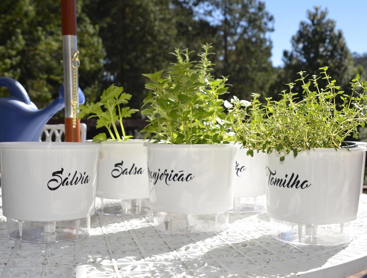 vasos autoirrigáveis para plantar hortaliças na sua horta em casa