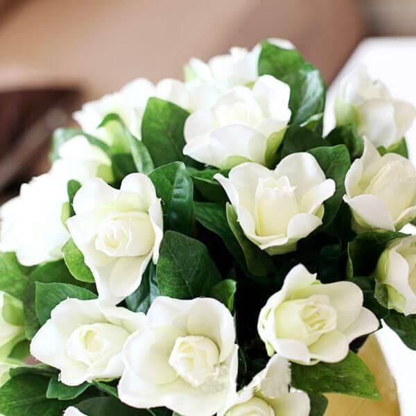 Branca como a neve e de origem chinesa, são as flores mais resistentes dessa estação. Elas também são as mais procuradas para integrarem decorações dos mais diversos eventos, como centro de mesa principalmente.