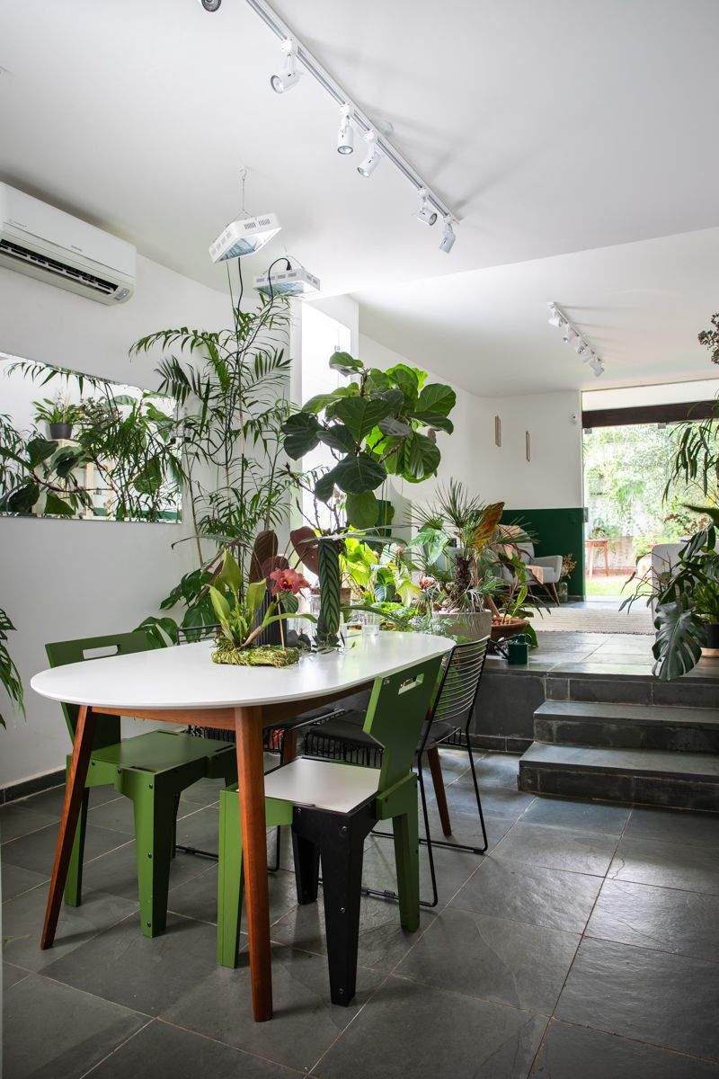 sala de jantar urban jungle.