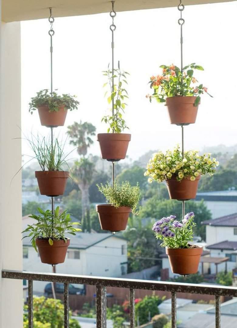 local com sol no seu partamento para ter sua horta em casa com hortaliças.