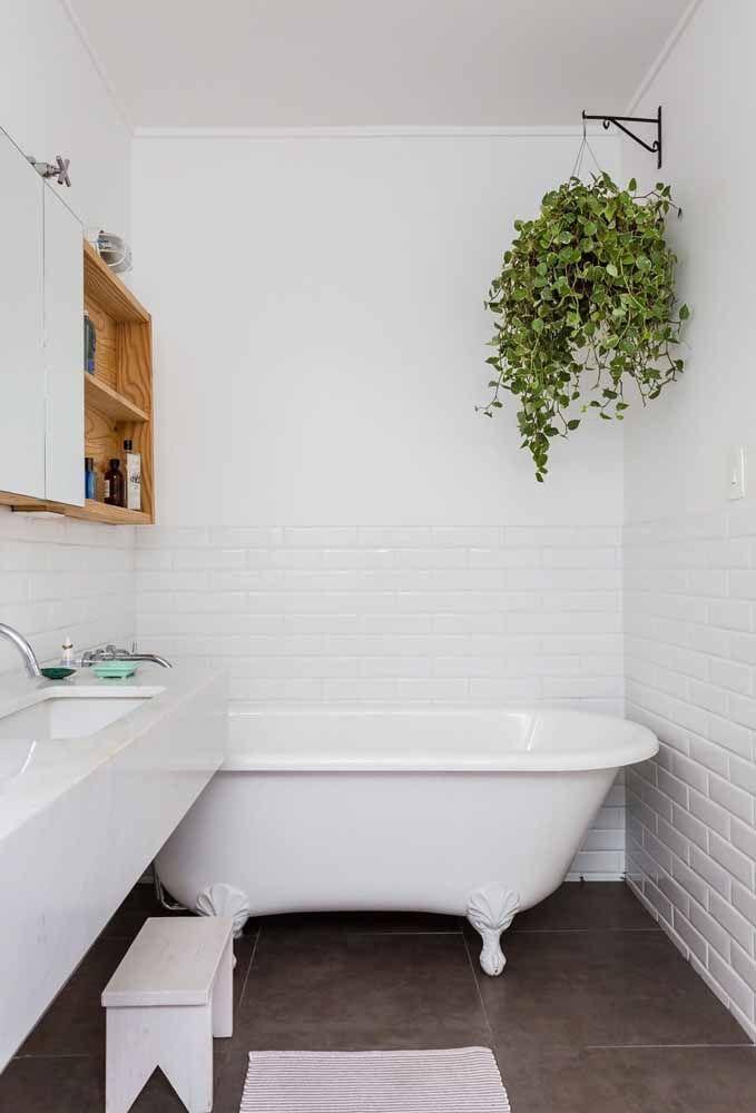 Planta suspensa no banheiro claro.