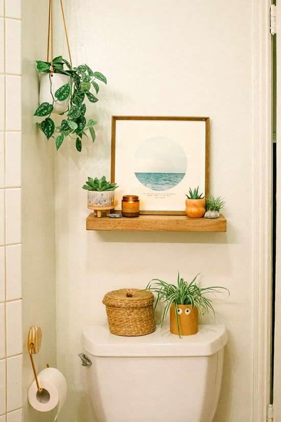 Plantas no lavabo.